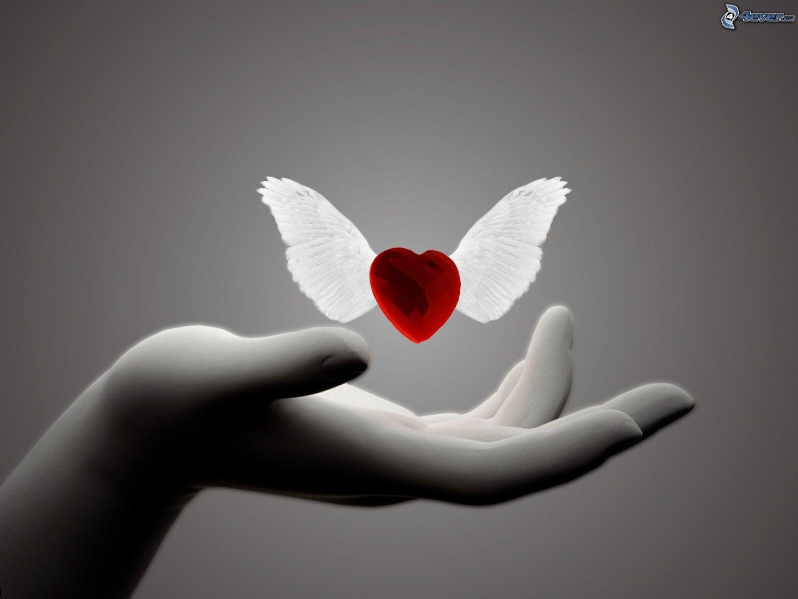 cuore-con-le-ali-154600